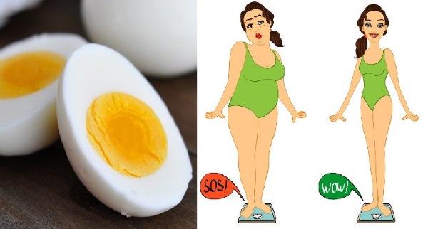 Сбросить вес с помощью яиц