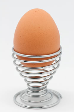 eat only hardboiled eggs to lose weight